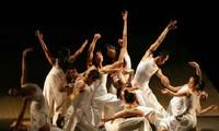 24 compagnies au Festival international de la danse 2017 au Vietnam