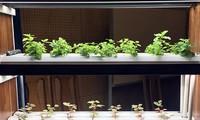 Colloque sur le développement de l'agriculture high-tech