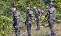 Pyongyang a retiré 636 mines à Panmunjom