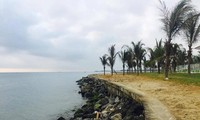 Des experts hollandais proposent des solutions pour réduire les érosions à la plage de Cua Dai