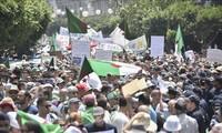 Une foule de manifestants dans les rues d'Alger pour le 20e vendredi de contestation