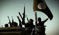 L'EI s'est renforcé dans certaines zones en Irak et en Syrie, selon Washington