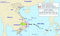 Le typhon Matmo attaque le Centre méridional et dégénère en dépression tropicale