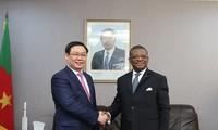 Déplacement du vice-Premier ministre Vuong Dinh Huê au Cameroun