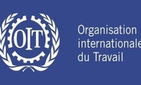 L'OIT apprécie l'adoption du Code du travail amendé du Vietnam