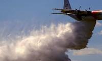 Australie: 3 morts dans la chute d'un avion-citerne de lutte aux feux de forêt