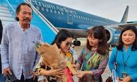 Dà Nang accueille le premier vol de l'année du Rat