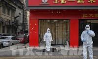 Coronavirus: 304 morts en Chine, près de 14.000 infections