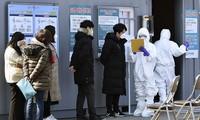 Covid-19 : 346 contaminations en République de Corée