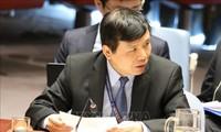 Le Vietnam soutient les efforts de paix du Conseil de sécurité de l'ONU