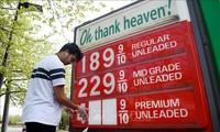 Les prix du pétrole confirment leur remontée, au terme d'une semaine historique