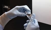 Coronavirus : les États-Unis accusent la Chine de piratage autour de la recherche de traitements et de vaccins