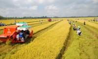 Exemption de la taxe foncière sur les terrains agricoles: l'AN adopte la prorogation jusqu'en 2025