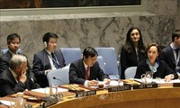 Premier semestre: Bilan du Vietnam au sein du Conseil de sécurité de l'ONU