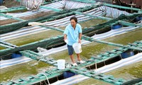 Le Vietnam résiste au changement climatique