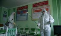 L'UNICEF autorisé à expédier des marchandises humanitaires à Pyongyang