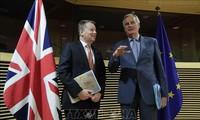 Brexit :  Barnier déçu et préoccupé par la faible avancée des négociations