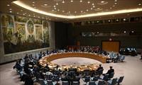 Le Conseil de sécurité entérine l'accord de cessez-le-feu en Libye