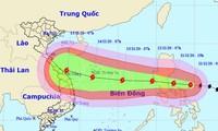 Faire face au typhon Vamco