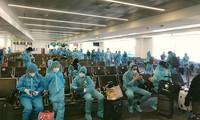Rapatriement de 450 Vietnamiens du Japon