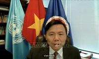 Le Vietnam préside la réunion du groupe de travail sur les tribunaux internationaux