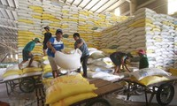 L'UEEA promet d'importer 10.000 tonnes de riz du Vietnam en 2021