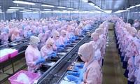 Taxes anti-dumping : le Vietnam salue la décision des États-Unis