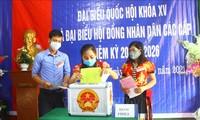Législatives: l'opportunité pour les Vietnamiens de s'exprimer sur des sujets importants