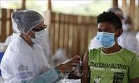 Covid-19: plus de 178,6 millions de patients recensés dans le monde