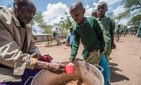 Le FIDA collabore avec les banques publiques de développement en faveur de systèmes alimentaires durables et équitables