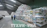 Exportation: une croissance de 25,5% au cours des sept mois passés