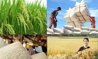 Sécurité alimentaire : une nouvelle feuille de route
