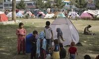 Afghanistan: un million d'enfants risquent de mourir de faim d'ici à la fin de l'année (PAM)