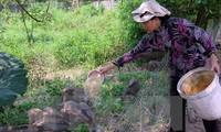 Вьетнам активизирует агитационно-пропагандистскую работу в горных районах страны