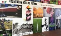 Распространение вьетнамской культуры во французском городе Шуази-ле-Руа