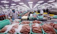 Система контроля безопасности бесчешуйчатой рыбы Вьетнама признана эквивалентной американской системе