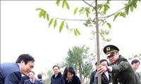В провинции Футхо прошел праздник посадки деревьев в связи с Тэтом