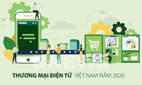 Во Вьетнаме в свет вышла Белая книга по электронной коммерции 2020 г.
