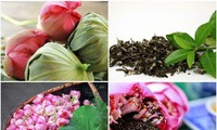 Искусство ароматизации чая лотосом во Вьетнаме