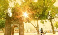 Очарование осени в городе Ханое