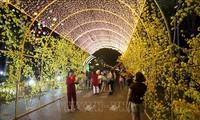 Во Вьетнаме оживленно проходят различные мероприятия в связи с Традиционным лунным новым годом