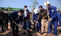 Во Вьетнаме идет разработка базы данных для карты деревьев с применением технологий 4-й промышленной революции