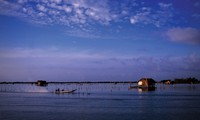 Đầm Thị Tường điểm đến hấp dẫn của du lịch sông nước tỉnh Cà Mau
