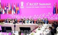 Nhiều kỳ vọng từ Hiệp định Đối tác Kinh tế Toàn diện Khu vực (RCEP)