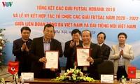 VOV và VFF tiếp tục hợp tác tổ chức các giải futsal 2020- 2022