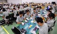 Chưa có thông tin về lao động Việt Nam tại Hàn Quốc nhiễm Covid 19