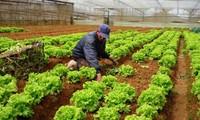 Terus meningkatkan kualitas  pengelolaan Negara dalam instansi pertanian.