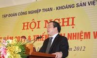 Grup  batu bara  dan mineral Vietnam menggelarkan tugas tahun 2013