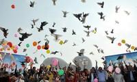 Penjelasan tentang hobi main melepas burung merpati di Vietnam