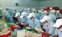 Ekspor perikanan Vietnam bulan Mei mencapai kira-kira USD 500 juta